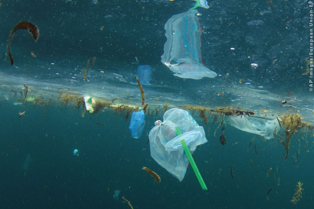 West Cork called to take part in plastic audit