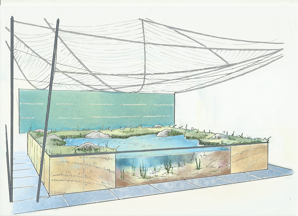 Bord Iascaigh Mhara underwater garden at Bloom exposes threat of plastic on our seas